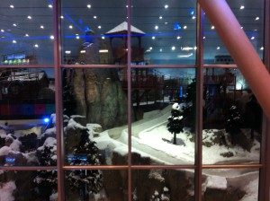 Skiing at Mall of Emirates