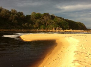 A coastal view of New South Wales, Australia