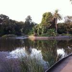 A view of the Royal Botanic Garden, Melbourne