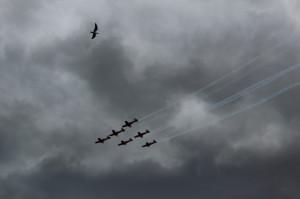 Air show, Grand Prix 2014