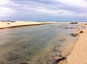 Betka Beach, Mallacoota