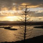 Evening light at Bermagui