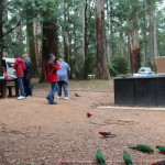 A view of Grants Picnic Ground