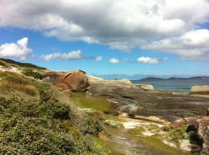 Walking track to Squeaky Beach, Wilsons Promontory