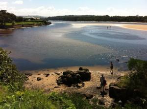A view of Minnamurra river