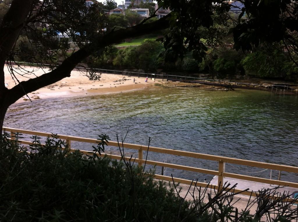 Clovelly Bay, Sydney