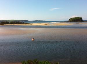 Enjoying the Minnamurra river