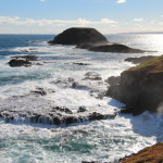 A view from the Nobbies broadwalk, Phillip Island