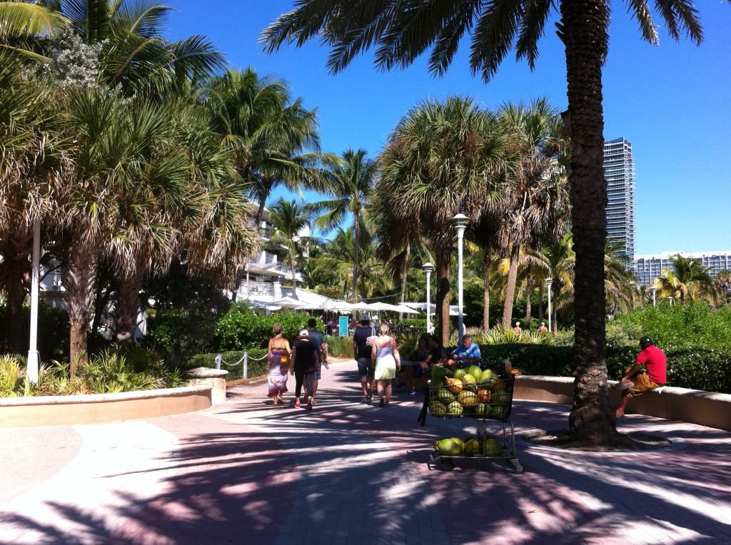 Miami beach hotel area