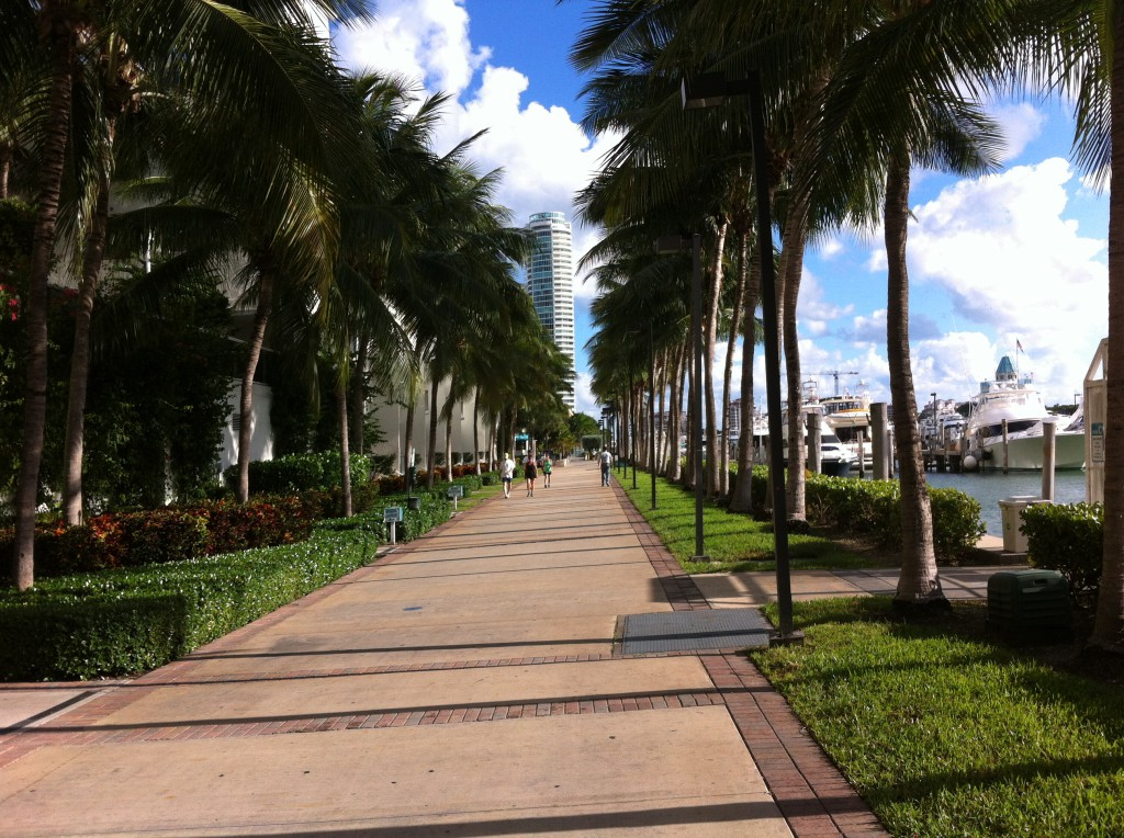 South Beach Marina walkway Routes and Trips