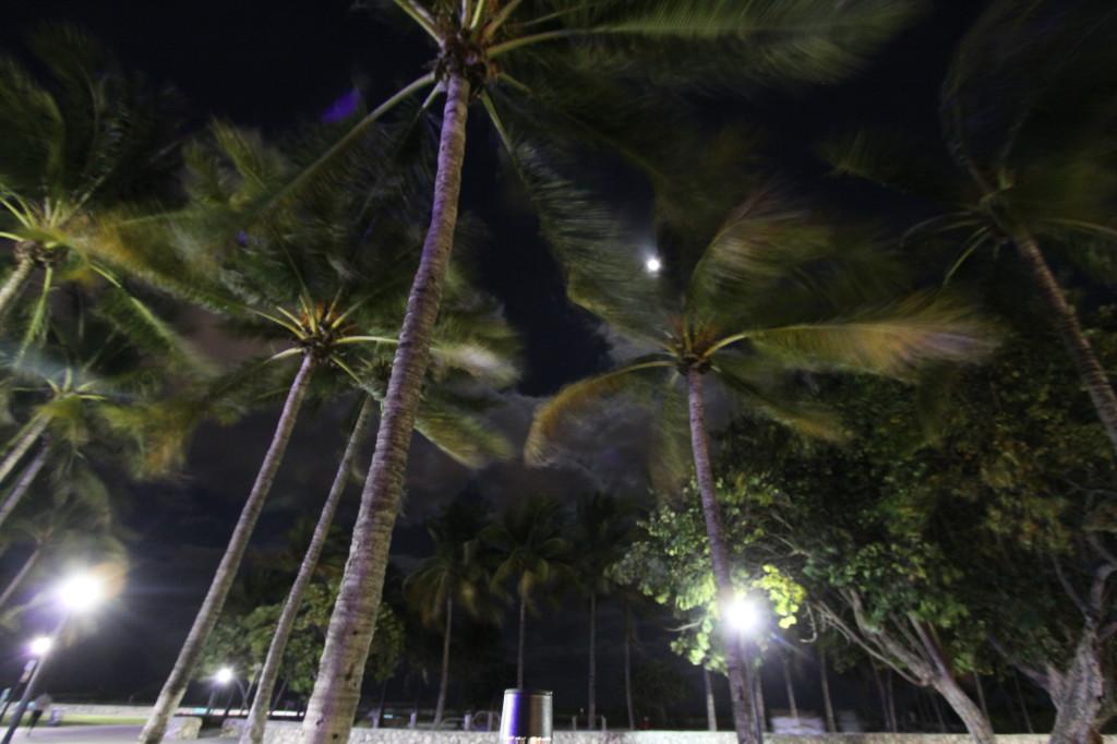 Ocean Drive, Lummus Park, Miami