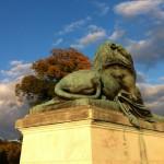 A lion, Capitol Grounds, Washington DC
