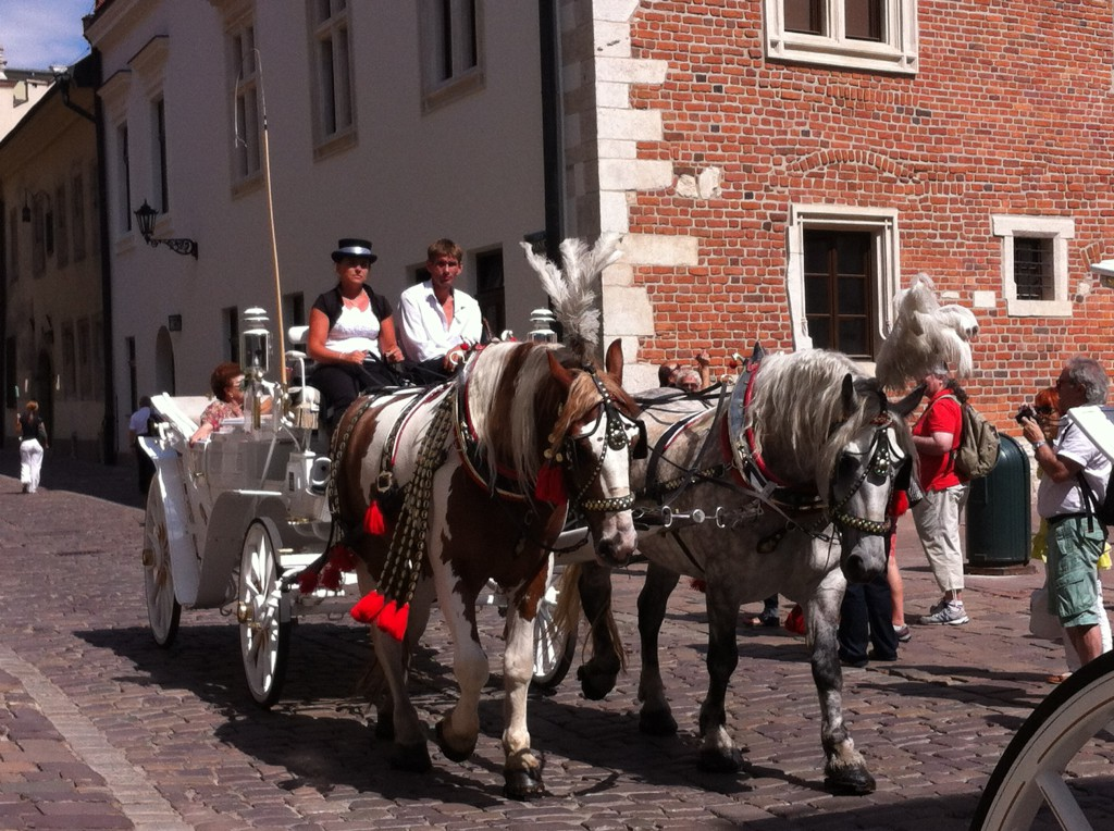 Horse and carriage in Krakow Old Town