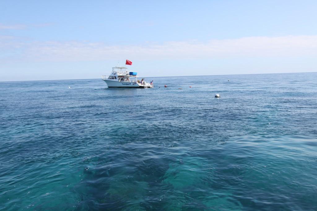 Boat trip, John Pennekamp Coral Reef State Park