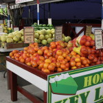 Fruits being sold on the road to Everglades National Park