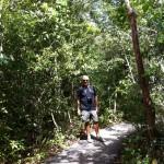 Gumbo Limbo walking trail, the Everglades