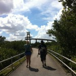 Observation tower, Shark Valley, the Everglades