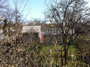 Garden plots, Gdansk