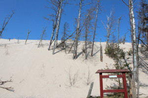 Shifting Sand Dunes, Slowinski National Park