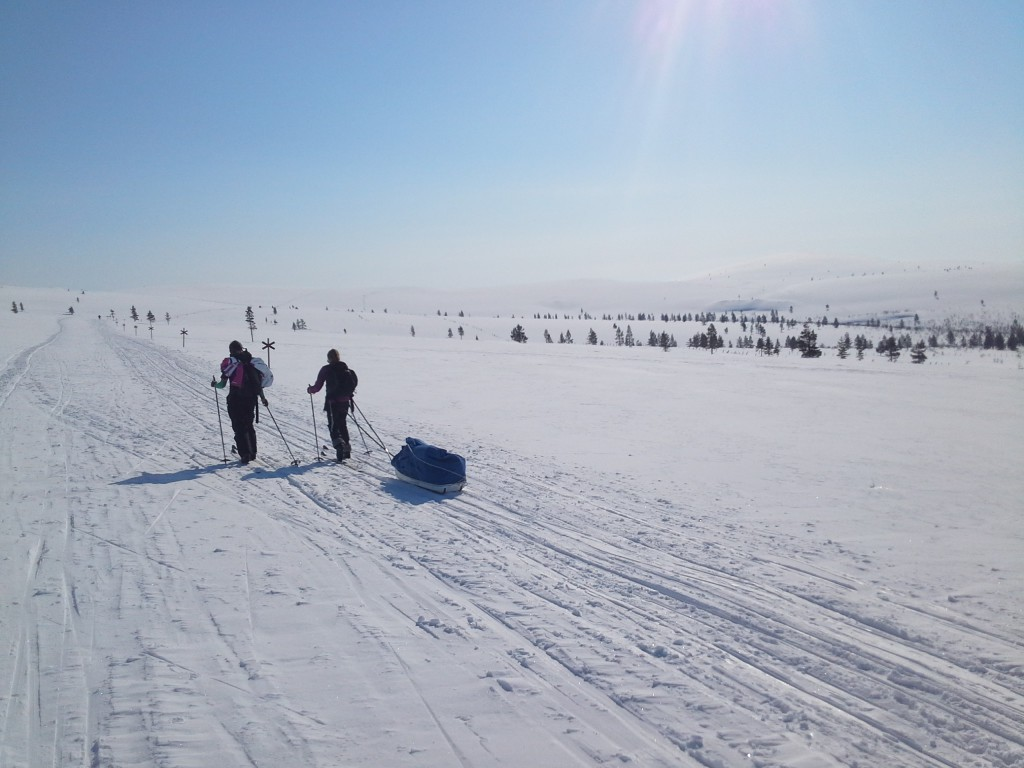 Ski tour in Lapland wilderness, Finland
