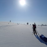 Skiing with the Pulkka in Lapland