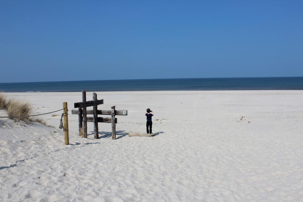 Beach and the Dunes, Slowinski National Park