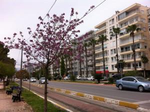 Konytaalti Road, Antalya