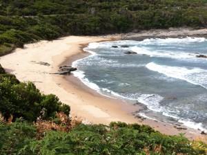 Beach on Great Ocean Road