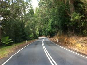 Road to Cape Otway, Great Ocean Road
