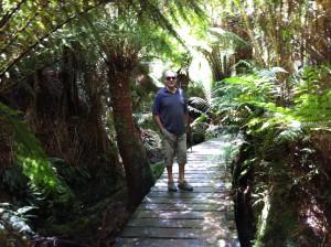 Walking in Mait's Rest, the Great Ocean Road, Australia