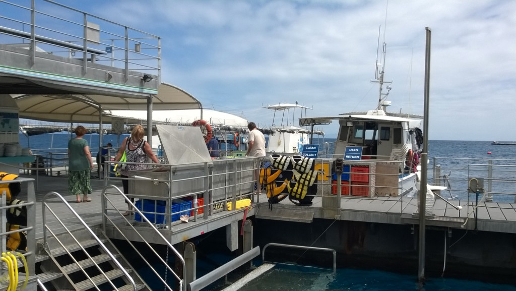 Agincourt Reef pontoon