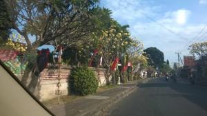 Driving through a Bali village