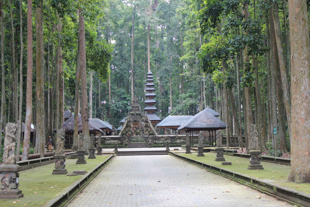 Sangeh Monkey Forest and statues, Bali