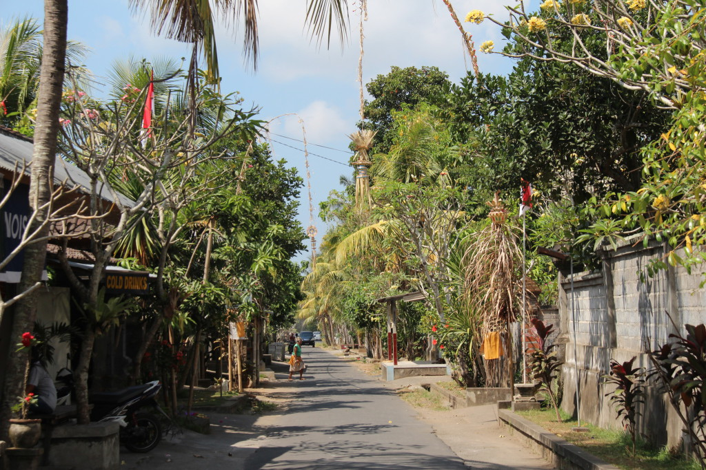 Bali village road on day trip to Central Bali