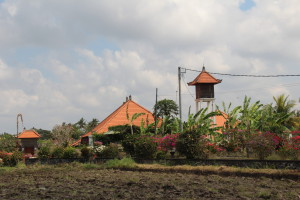 Balinese countryside in Batuan