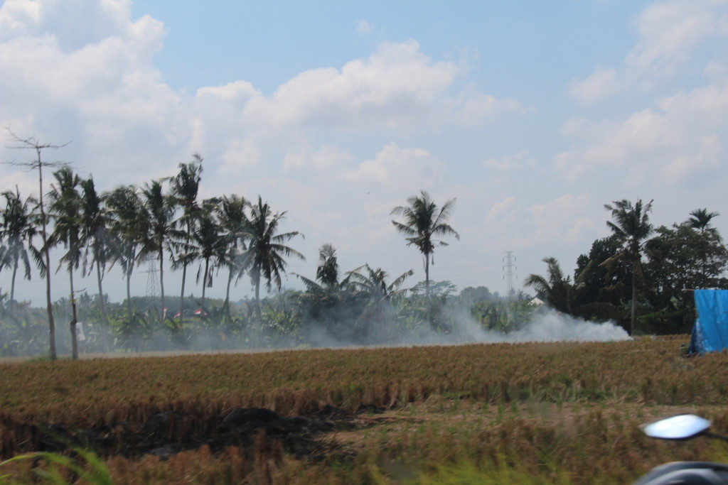 Batuan countryside