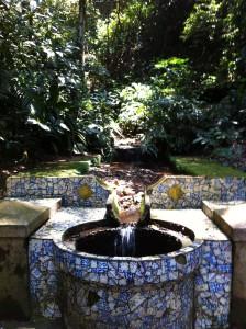 Parque National da Tijuca mosaics