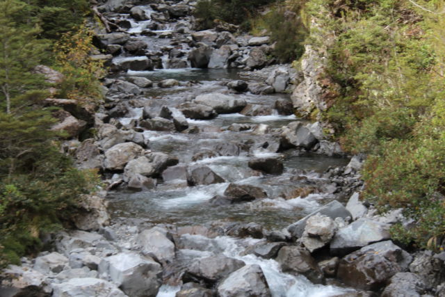 Arthur's Pass National Park river