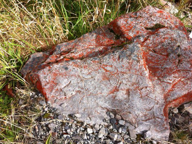 Christchurch to Greymouth roadside stone