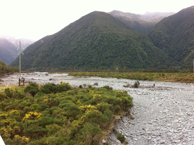 Christchurch to Greymouth river and flowers