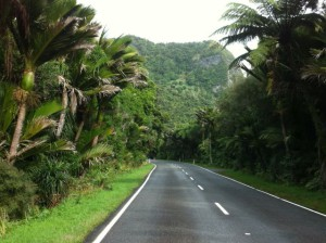 Driving in Punakaiki rainforest