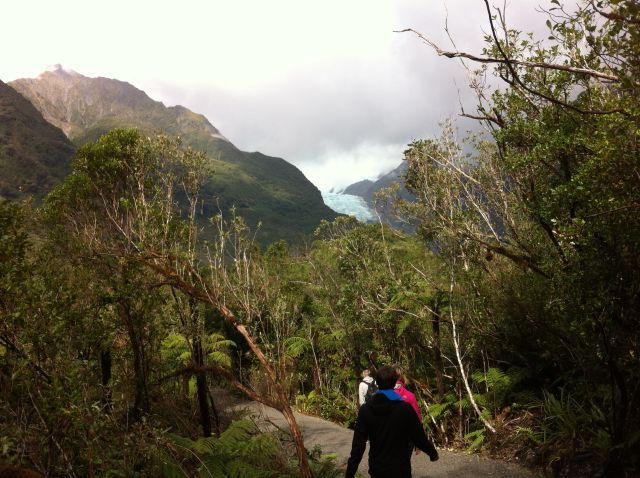 Walking to Franz Josef Glacier
