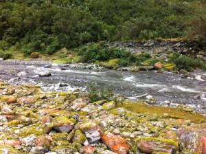 Franz Joseph Glacier river