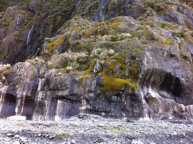 Franz Josef Glacier rocks