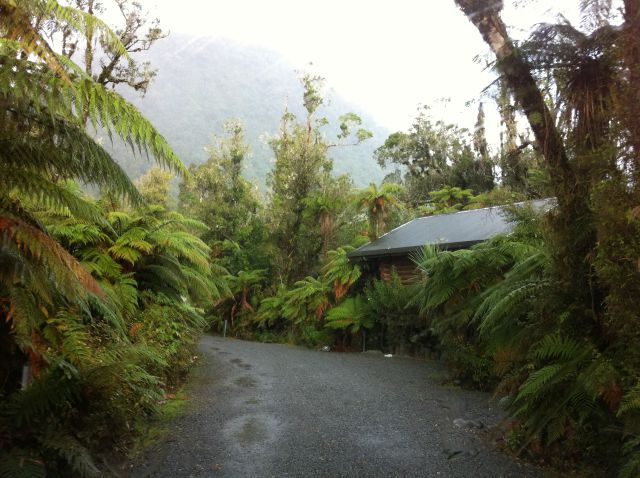 Franz Josef Rainforest Holiday Park