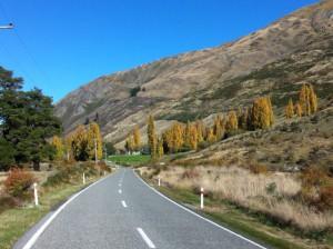 Glendhu Bay mountains