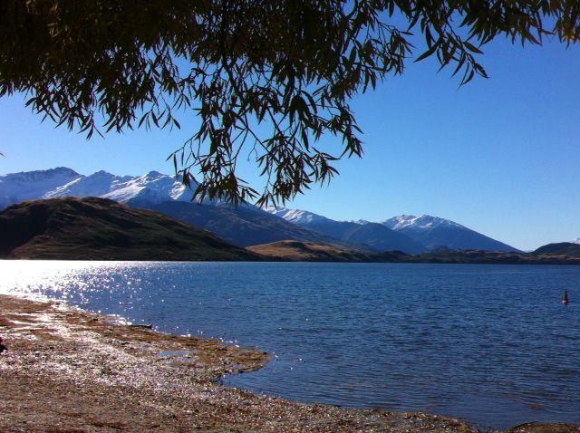 Lake Wanaka from Glendhu Beach