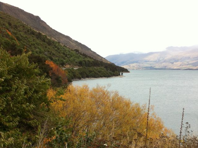 Drive from Haast to Queenstown: Lake Wanaka