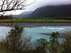 New Zealand West Coast river