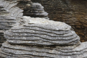 Paparoa National Park Pancake stones